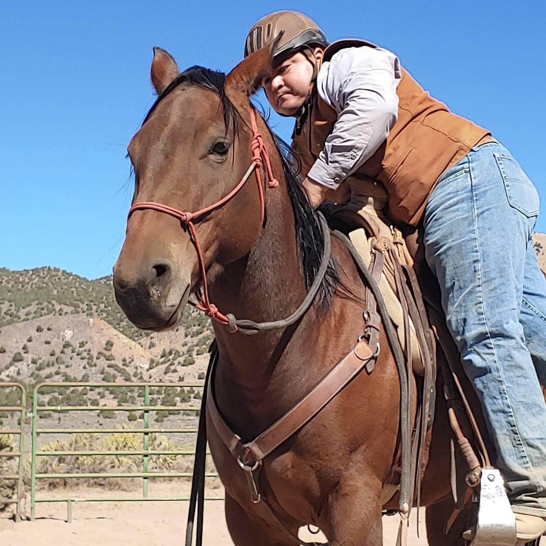 Full Care Horse Training