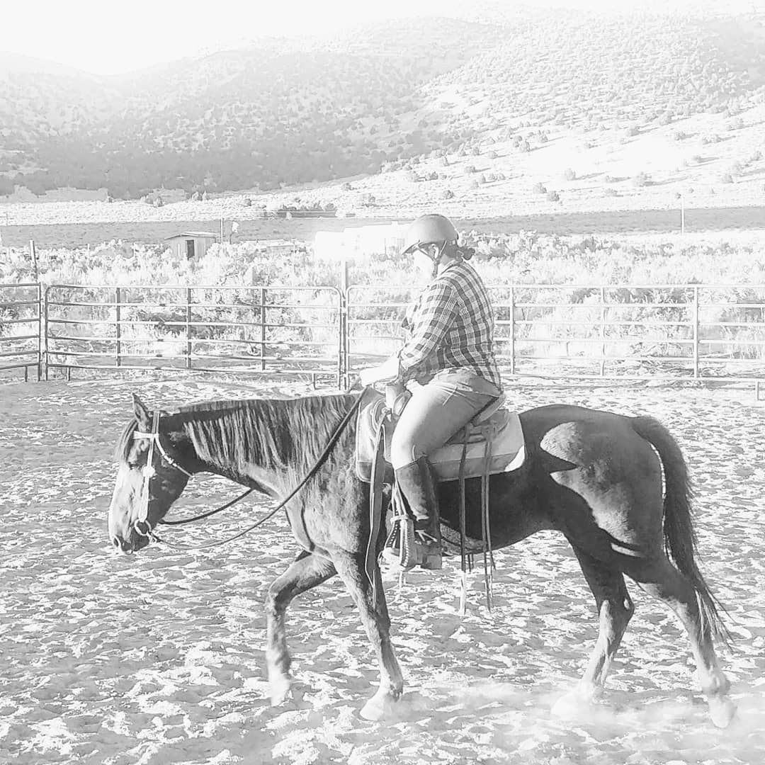 horseback riding, mustang training, nevada horse trainer