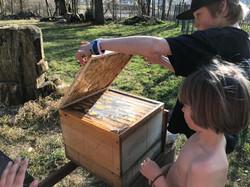 Bienenstöcke an der Alm