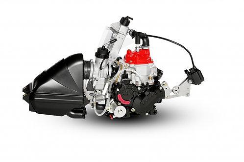 Rotax Max Evo 125cc