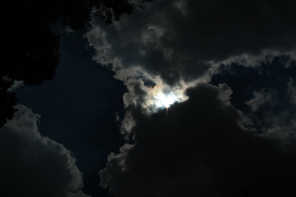 Trees, moon, clouds