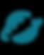 SKyRocket_Logo_edited.png