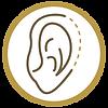 plastica das orelhas.png