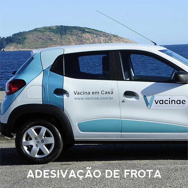 Vacinae_04.png