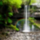 garden of tranquility.jpg