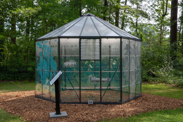 Hothouse-Project-18.jpg