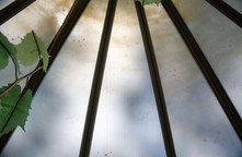 Hothouse Roof Detail