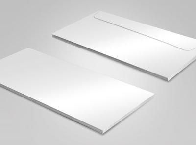 "#10 - 4.125""x9.5"" Blank Envelopes"