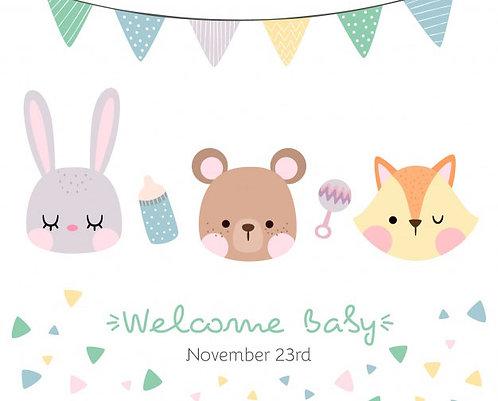Welcome Baby Quarantine Banner - Horizontal