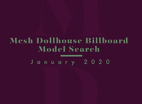 Mesh Dollhouse Billboard Search🔦