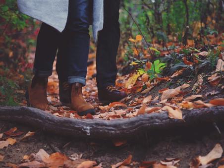 Romantikus őszi program - Ópusztaszeri Erdei Vendégházak