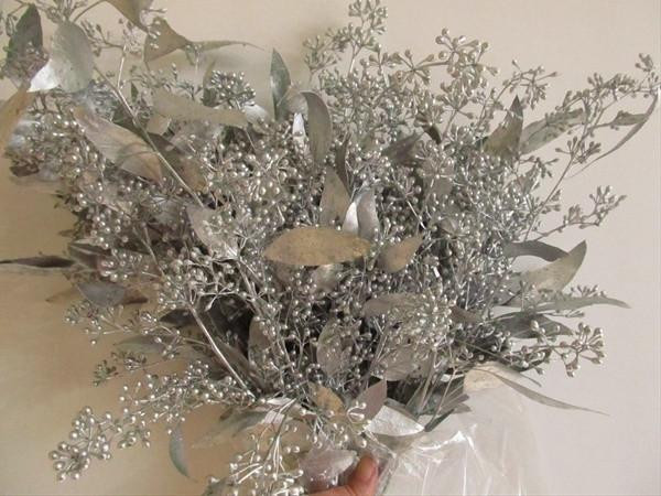 Euc Seeded Silver