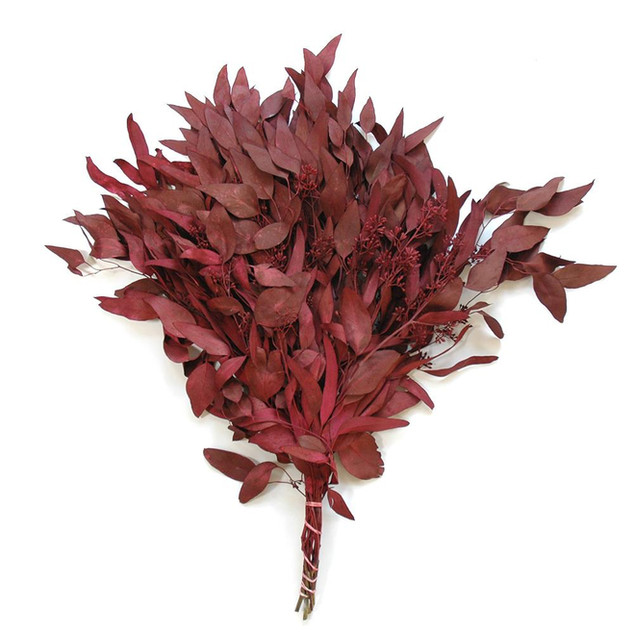 Euc Seeded Red