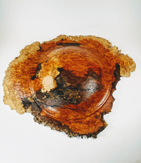 Australian Yellow Box Burl