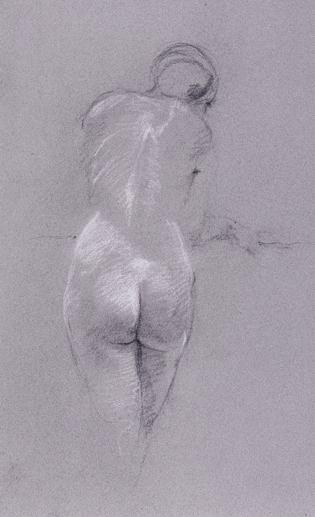 Back View – Female Figure