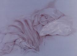 Winter's Gentle Sleep