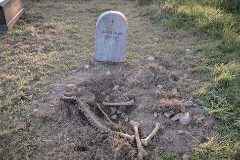 La tomba di Arrigo Aringo Arcaniversitas e il Patto dei Serpenti Flavio Mancinelli ph