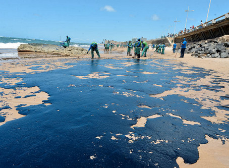 Óleo Nas Praias: Entenda Seus 3 Principais Impactos e Saiba Como Agir