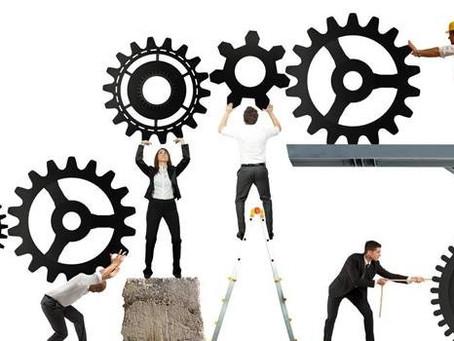 Crescimento empresarial: a relação entre organização e produtividade