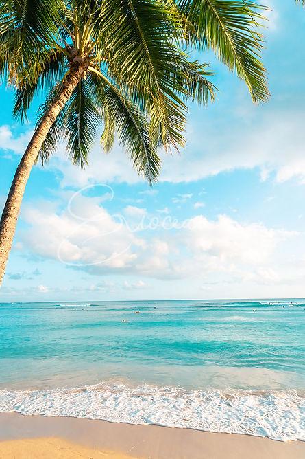 Hawaii Waikiki Beach, Palm Tree, Hawaii Picture, Wall Art, Wall Print, Beach Decor, Wall Decor, Palm Tree Print