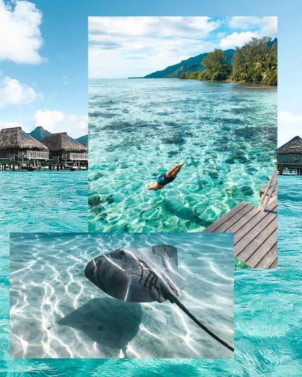 Moorea_Tahiti_Hilton.jpg