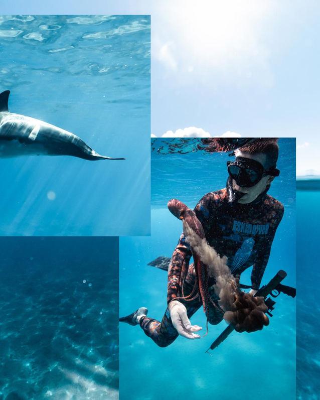 Unerwater Photo Hawaii