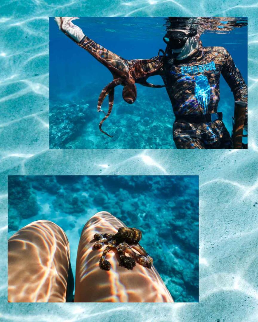 Underwater Photo_Hawaii.jpg