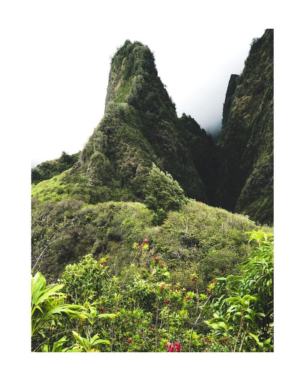 マウイ島旅行、おススメ観光スポット、イアオ渓谷