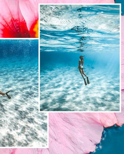 Underwater Photography x ERIOCEAN-5.jpg