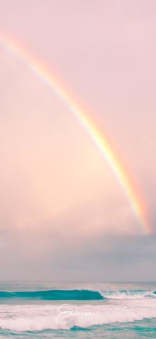 Aloha Rainbow.png