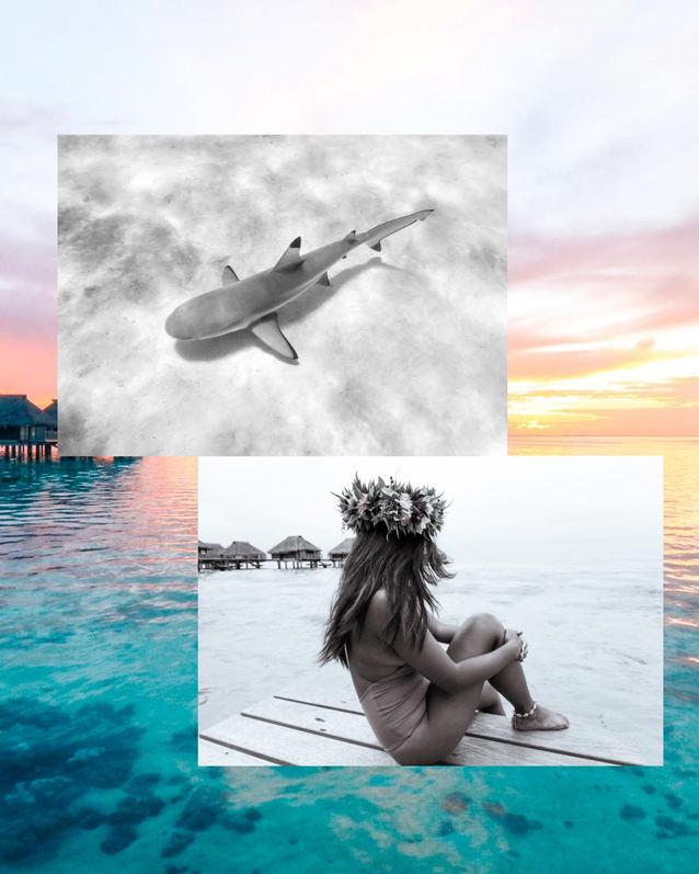 Moorea_Tahiti.jpg