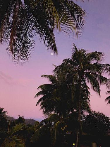 Tahiti Moorea Trip-10.jpg