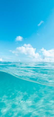 Wallpaper-Hawaii Underwater.png