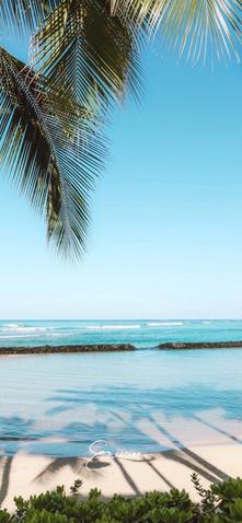 Wallpaper-Waikiki Beach.png