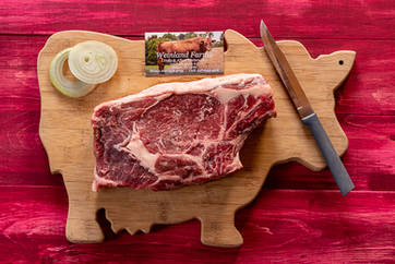 Raw steak on a cutting board with raw onions and a knife in the Catskills