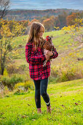 Farm girl looking at her chicken