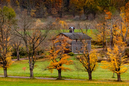 Colorful trees surrounding a barn in The Catskills