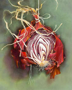 Painting of an onion