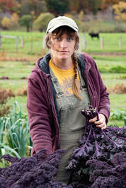 Female farmer picking kale in The Catskill Mountains