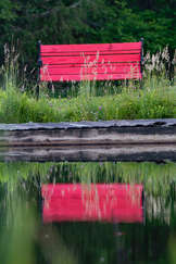 Reflection of a red bench in a pond in The Catskills