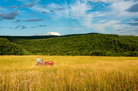 Man on a red tractor in a field