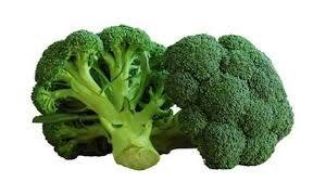 brocoli de Bretagne frais- prix au kg