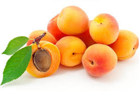 Abricot  /prix au Kg