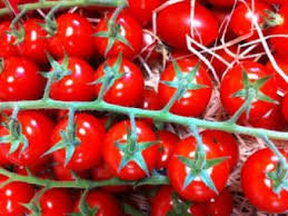 Tomate grappe cerise Rubis  prix/kg