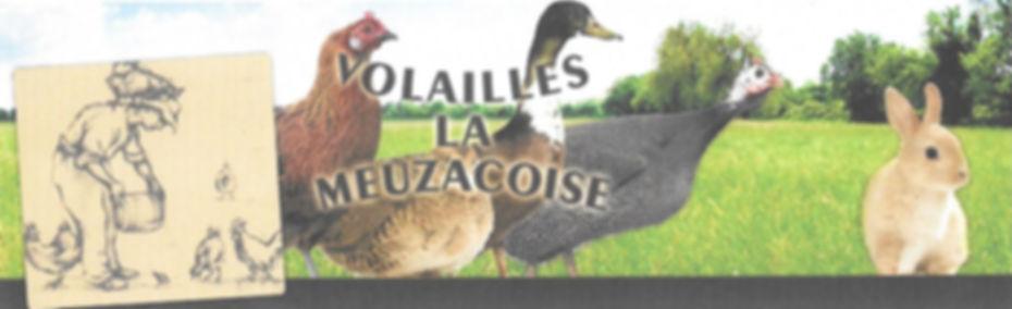 Meuzacoise_fêtes_edited.jpg