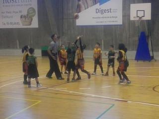 PreMini Mixte: Crònica Club Joventut Badalona - U.E. Sant Andreu