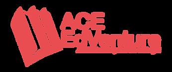 ACE_Logo_color.png