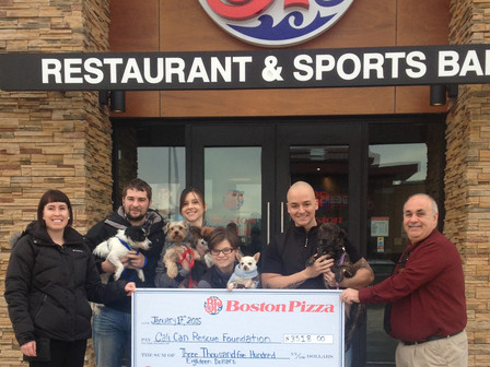 A BIG CHEQUE for Little Dogs