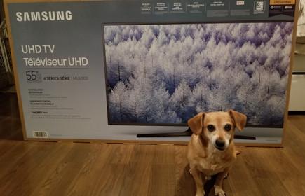"Samsung 55"" MU6300 4K UHD Television"