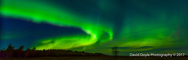 A BEAUTIFUL framed 13x19 photo of the Aurora Borealis taken over Elk Island Park taken and donated by David Doyle Photography